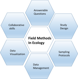 syllabus graphic